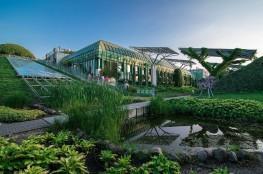 Warszawa Atrakcja Warto zobaczyć Ogród na dachu Biblioteki Uniwersyteckiej