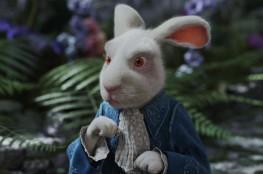 Warszawa Atrakcja Escape room W pogoni za białym królikiem